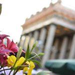 ¿Qué es el Día de las Flores?